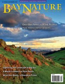 Bay Nature Magazine